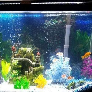 LED-Aquarium-Beleuchtung